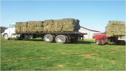 moving the smaller hay load with the forklift